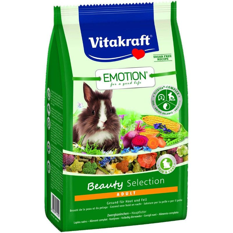 Emotion Beauty Selection Adult Rabbit
