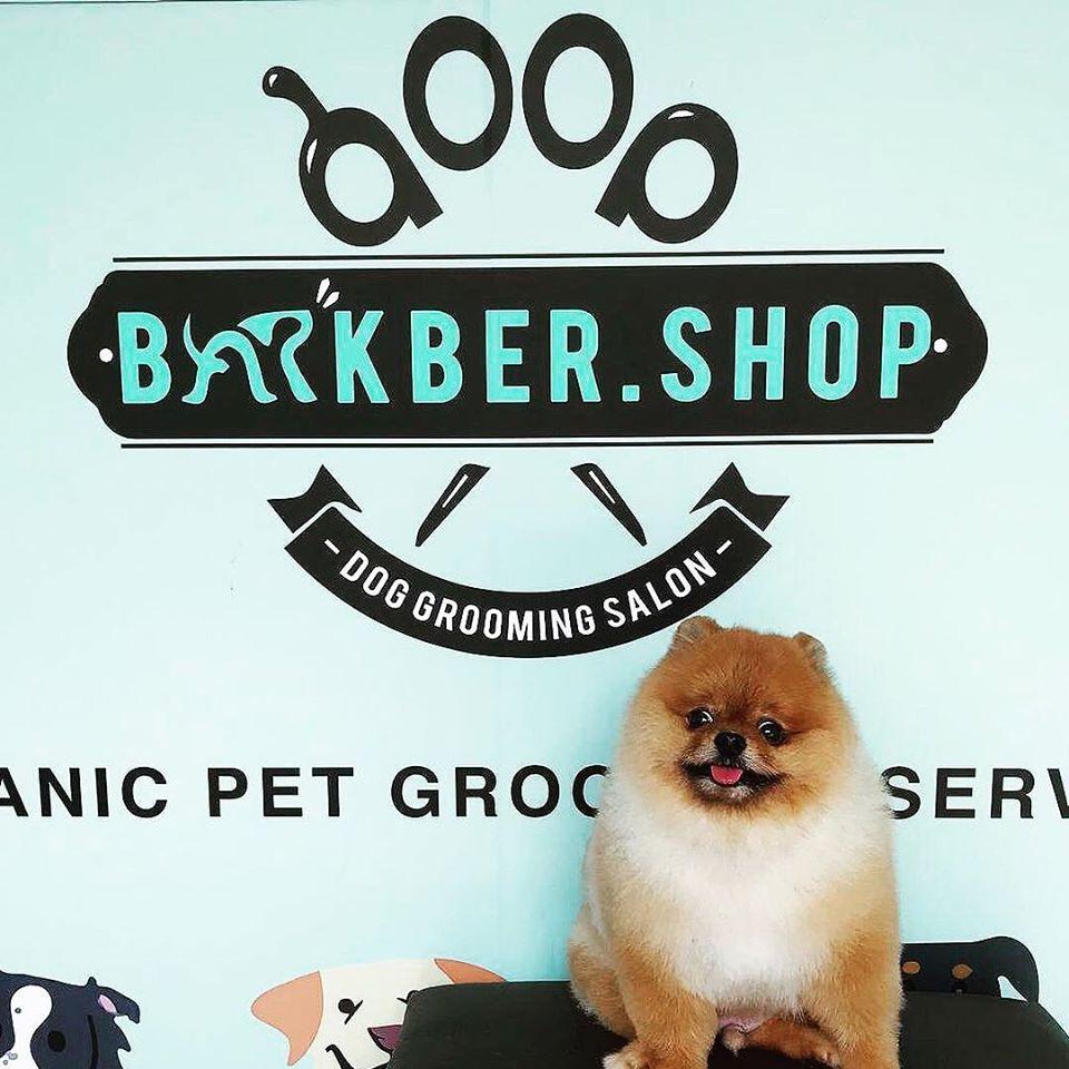 Barkber Shop